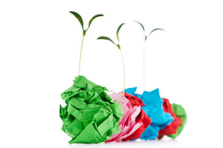wastebasket: Paper recycling concept with seedlings on white