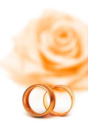 Concepto de boda con rosas y anillos Foto de archivo