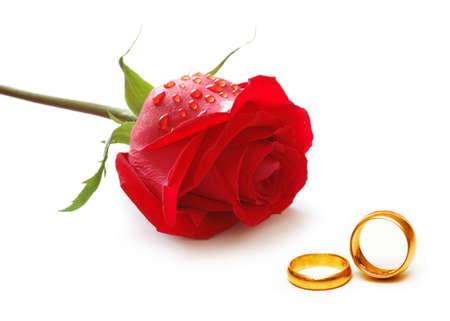 Concetto di nozze con rose e anelli