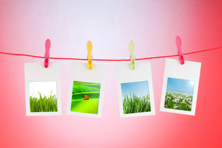 Nature photos in picture frames Stock Photo - 10615276