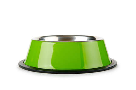 Pet bowl isolated on the white background photo