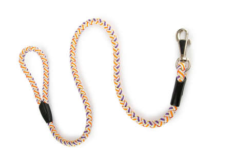 dog leash: Dog collar isolated on the white background