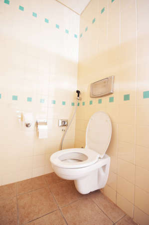 Toilet in the modern bathroom Stock Photo - 10660512