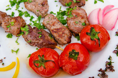 Meat kebab served in plate photo