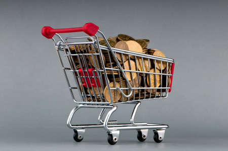 Shopping cart full of coins Stock Photo - 10810193