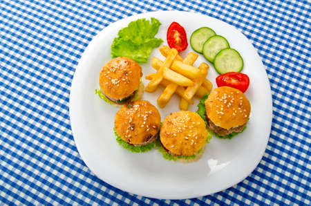 Burgers with french fries in plate Stock Photo - 10852784
