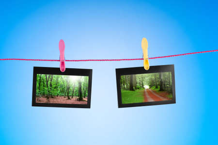 Picture frames with nature photos photo