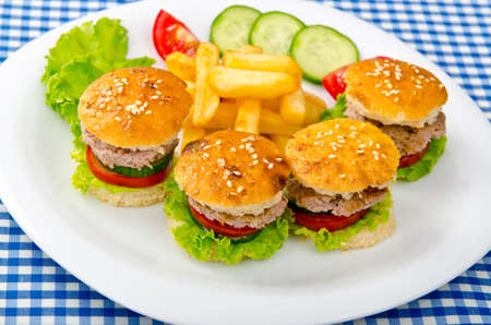 Burgers with french fries in plate photo