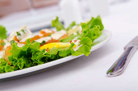croutons: Ceasar salad served in the plate