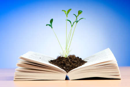 Seedlings growing from book in knowledge concept Imagens