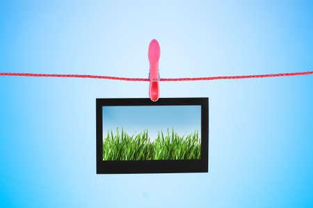 Grass on the photo Stock Photo - 11404979