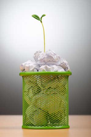Grüne Keimlinge wachsen aus Papier