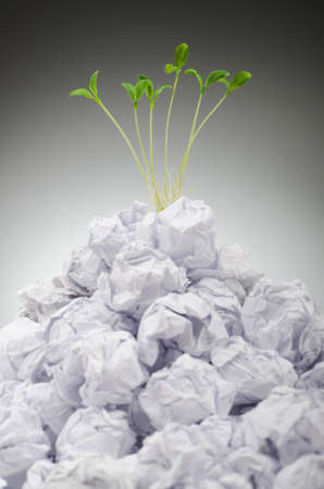 recycling paper: Green seedlings growing out of paper