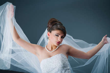 Beautiful bride in studio shooting Stock Photo - 12556071