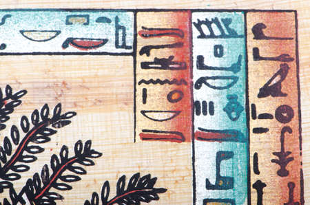 Egyptian papyrus as a background Stock Photo - 12512883