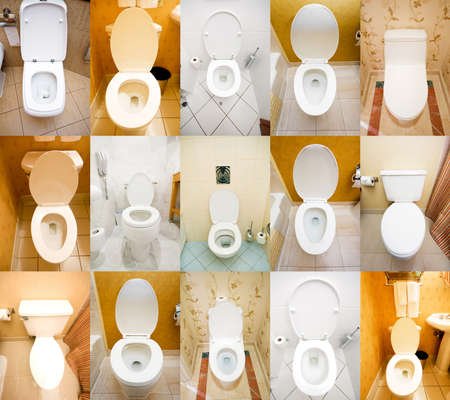 Collection of toilets from various places