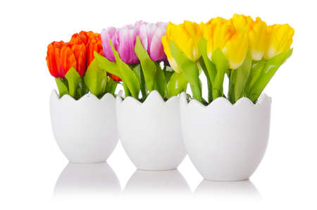 vase color: Tulips flowers isolated on the white