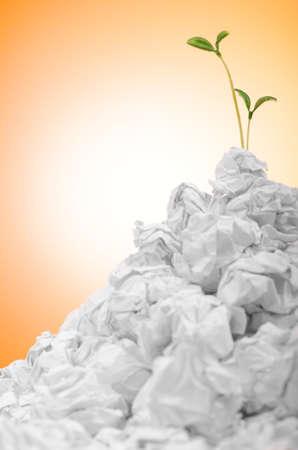 wastepaper: Green seedlings growing out of paper