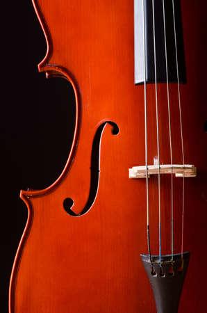 Music Cello in the dark room Stock Photo - 13588953