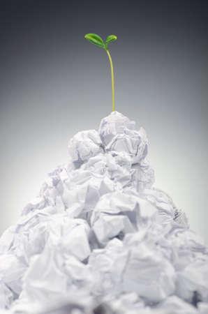 Grüne Keimlinge wachsen aus Papier Standard-Bild