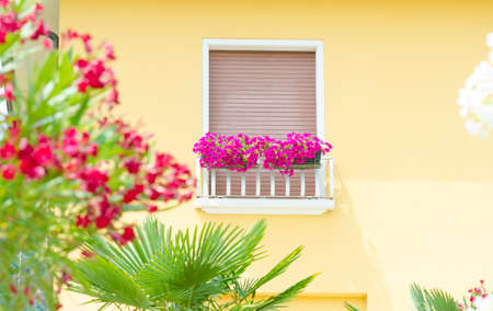 Nice balcony with fresh flowers