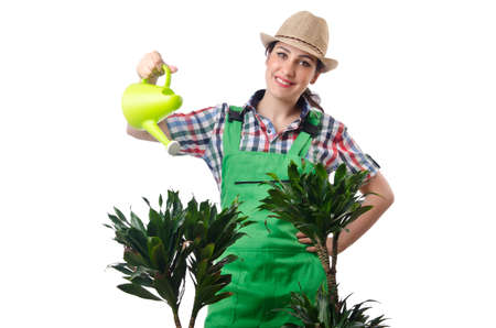 Girl watering plants on white photo