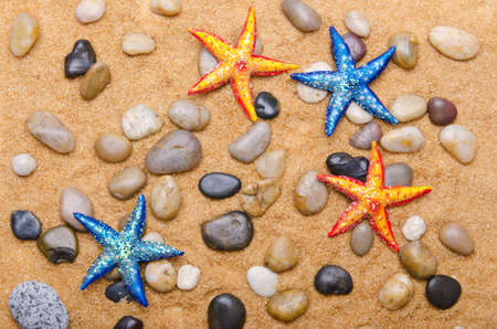 Sea stars isolated on the white photo