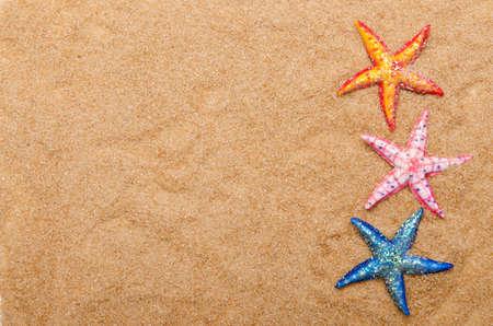 Sea stars on the sand