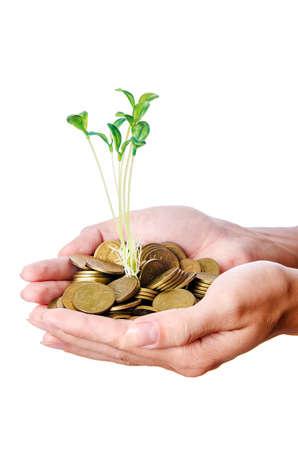 Businesswoman with seedlings and coins Stock Photo - 15081162