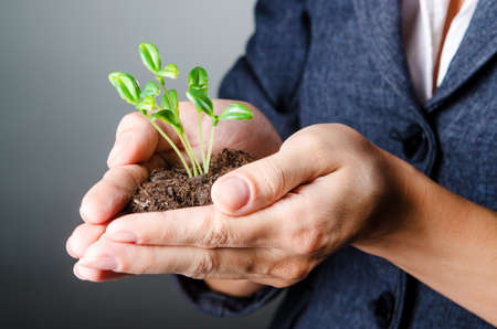 business environment: Businesswoman with seedlings and coins Stock Photo
