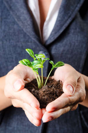 Businesswoman with seedlings and coins Stock Photo - 15538403