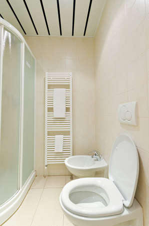 Toilet in the modern bathroom  Stock Photo - 15729431