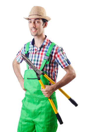 tree cutting: Man gardener with shears on white Stock Photo