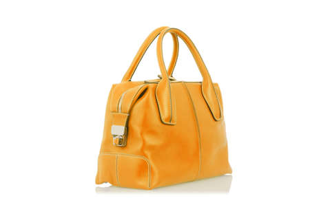 Elegant woman bag isolated on white Stock Photo - 15969435