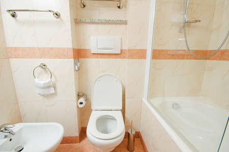 Toilet in the modern bathroom  Stock Photo - 16124557