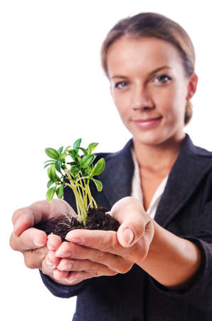 Businesswoman with seedling on white Stock Photo - 16276183