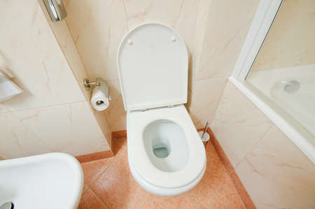 Toilet in the modern bathroom Stock Photo - 16388475