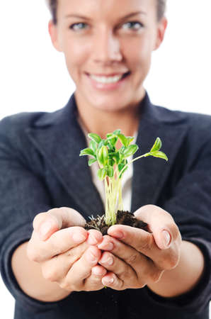 Businesswoman with seedling on white Stock Photo - 16491588