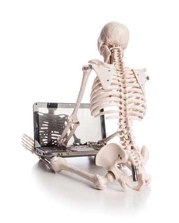 Skeleton working on laptop Stock Photo - 18163133
