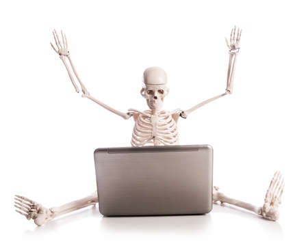 Skeleton working on laptop Stock Photo - 18163126