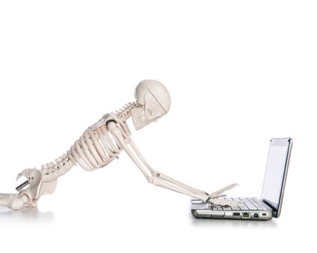 Skeleton working on laptop Stock Photo - 18301472
