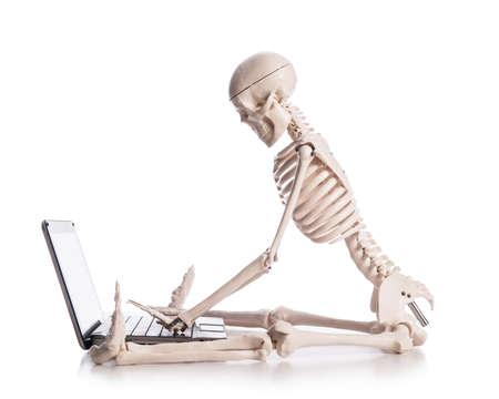 Skeleton working on laptop Stock Photo - 18301611