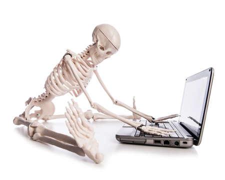 skelett mensch: Skeleton arbeitet am Laptop