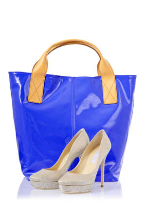 Elegant bag and shoes on white Stock Photo - 18482463