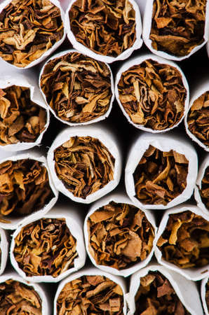 quiting: Close up of cigarettes tabacco Stock Photo