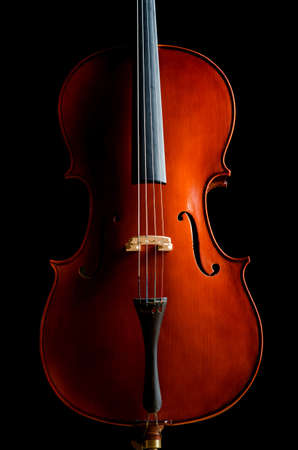 Violin in dark room  - music concept Stock Photo - 18482565