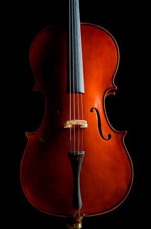 Violin in dark room  - music concept Stock Photo - 18482565