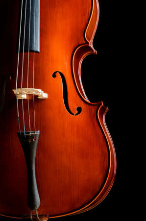 Violin in dark room  - music concept Stock Photo - 18485084