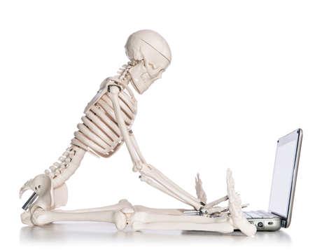 Skeleton working on laptop Stock Photo - 18608015