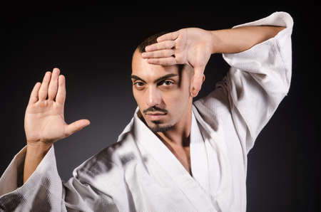 Karate martial arts fighter  photo